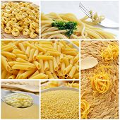 a collage of different pasta, such as tortellini, spaghetti, penne rigate, pastina or tagliatelle