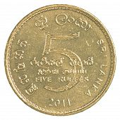 pic of sinhala  - 5 Sri Lankan rupee coin isolated on white background - JPG