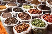 Постер, плакат: Indian Spices
