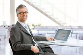 Mature businessman sitting at office desk using laptop computer, smiling.