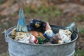 bucket of gnomes