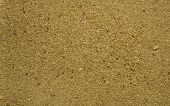 A macro photo of grains of sand