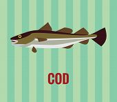 Cod drawing on green background.
