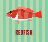 Redfish drawing on green background.