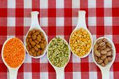 Selection of pulses on porcelain spoons on checkered tablecloth