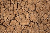Cracks In A Brown Ground