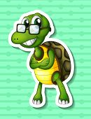 pic of green turtle  - Illustration of a close up turtle with green background - JPG