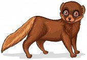 Illustration of a single cute brown mink