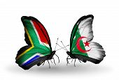 Two Butterflies With Flags On Wings As Symbol Of Relations South Africa And Algeria