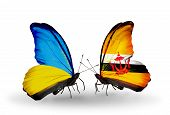 Two Butterflies With Flags On Wings As Symbol Of Relations Ukraine And Brunei