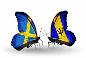 Two Butterflies With Flags On Wings As Symbol Of Relations Sweden And Barbados