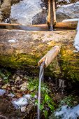 picture of trough  - old water fountain in a wooden trough - JPG