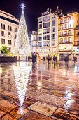Christmas Tree In A Square