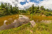 Stunning rice paddies landscape