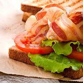 image of tomato sandwich  - hot big sandwich - JPG