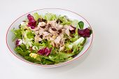 picture of escarole  - Chicken salad with tomatoes and raisin in a white bowl - JPG