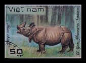 Post Stamp. Rhinoceros Sondaicus