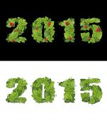 New Year 2015 Is Lined With Green Leaves.  Isolated