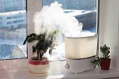 Humidifier On Window
