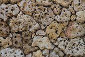 Porous Pumice Stones Wall