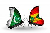 Two Butterflies With Flags On Wings As Symbol Of Relations Pakistan And Grenada