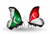 Two Butterflies With Flags On Wings As Symbol Of Relations Pakistan And Singapore