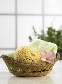 sponge in the rattan basket with flower