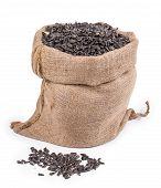 foto of semen  - Close up of black sunflower seeds in bag - JPG