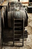picture of wine cellar  - Ladder leaning against an old oak wine barrel in a wine cellar giving access to the bung on top to check the fermentation of the wine during maturation in a viticulture concept - JPG