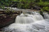 pic of nationalism  - Cascading waterfalls in lush Australian bush in Royal National Park - JPG