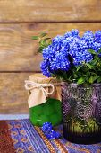 pic of blue-bell  - Blue bell flowers with maraschino cherry in glass jar on wooden background - JPG