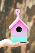 stock photo of nesting box  - Decorative nesting box in female hands on wooden background - JPG