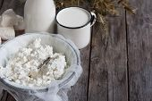 picture of oats  - Tzfat cheese milk cottage cheese wheat and oat grains on old wooden background - JPG