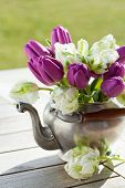pic of kettles  - Bouquet of purple and white tulips in tin kettle - JPG