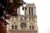 stock photo of damme  - photo of n�tre damme in paris.