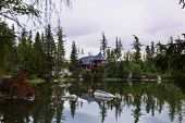 Постер, плакат: Quiet Mountain Lake Surrounded By Forest