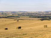 Dorchester Farmland Dorset England