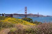 Golden Gate Bridge in summer