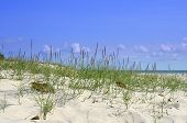 image of bribie  - a lovely sunny day on bribie island in australia showing blue sky and white sand - JPG