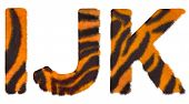 Tiger Fell I J And K Letters Isolated