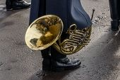 Постер, плакат: Musician musical instrument brass musical instrument French horn