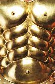 Close-up of a nice golden body armour