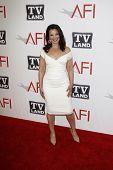 CULVER CITY - JUN 9: Fran Drescher at the 39th AFI Life Achievement Award Honoring Morgan Freeman he