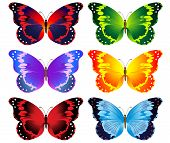 Illustration Of Set Of Colorful Butterflies