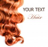 foto of red hair  - Curly Red Hair over white - JPG