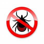 Ticks Stop Sign. Mite Warning Sign. Encephalitis Parasite Icon. Illustration Of Tick Warning Sign. B poster
