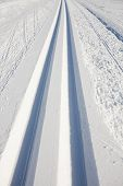 stock photo of nordic skiing  - cross country skiing tracks in the winter - JPG