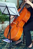 Playing violoncello