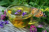 A Cup Of Herbal Tea And Medicinal Herbs On A Wooden Table. Butterfly Painted Lady Sitting On A Cup O poster