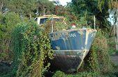 Dry Boat